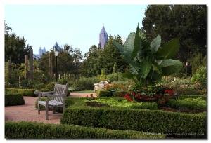 Atlanta Botanical Gardens- Lethal Rhythms